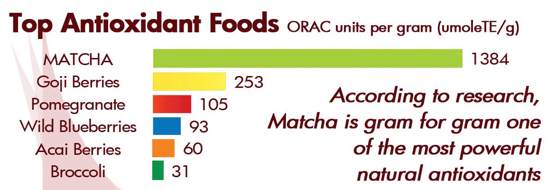 the matcha antioxydant