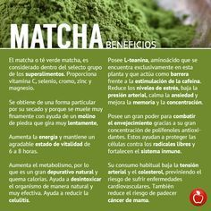 the matcha beneficios