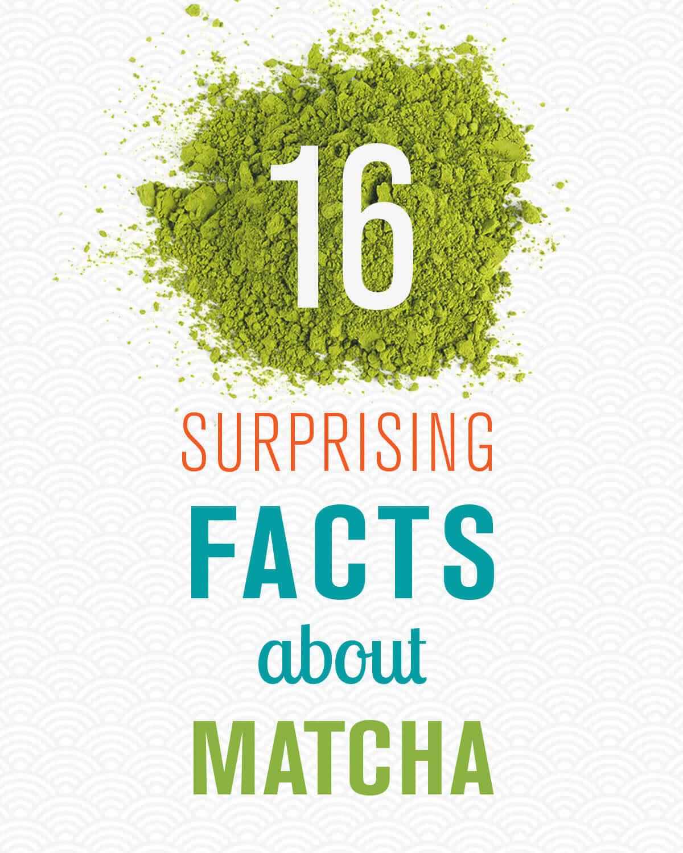 the matcha info