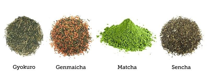 the matcha sencha