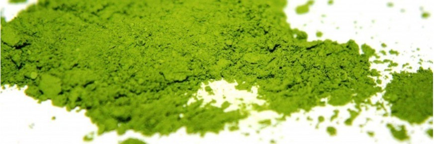 the matcha vente en ligne