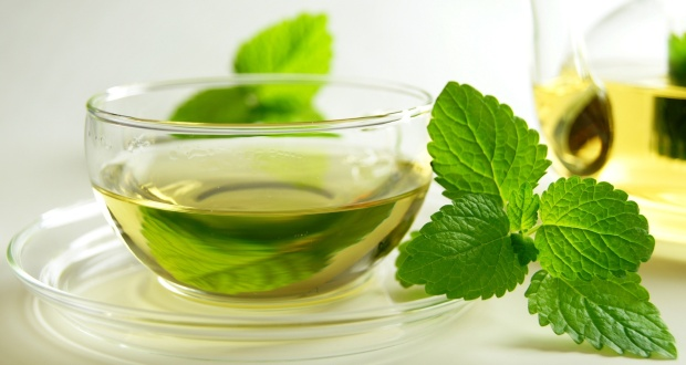 the menthe gastro