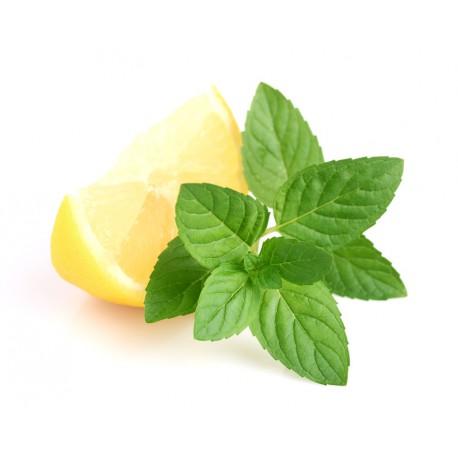 the menthe ou the citron
