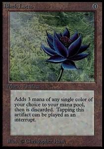 the noir lotus