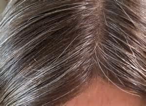 the noir pour cheveux blanc