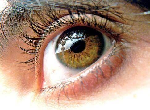 the noir yeux