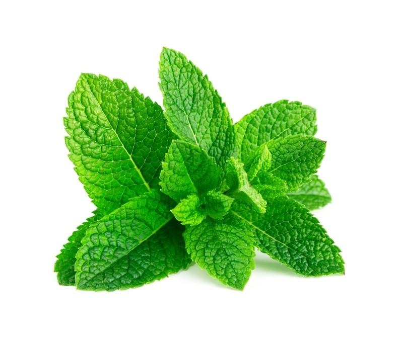 the vert a la menthe vertus