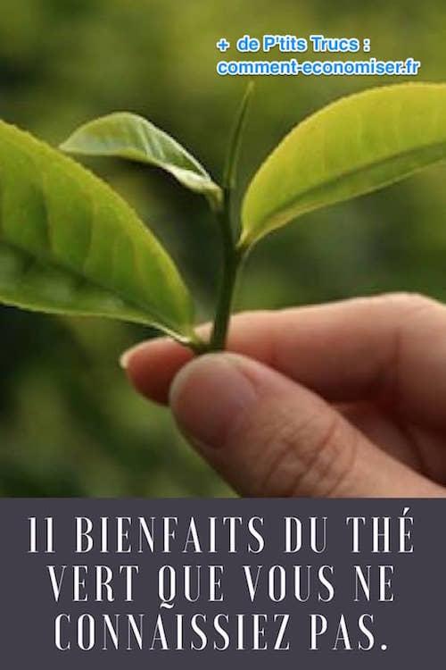 the vert bon pour la sante