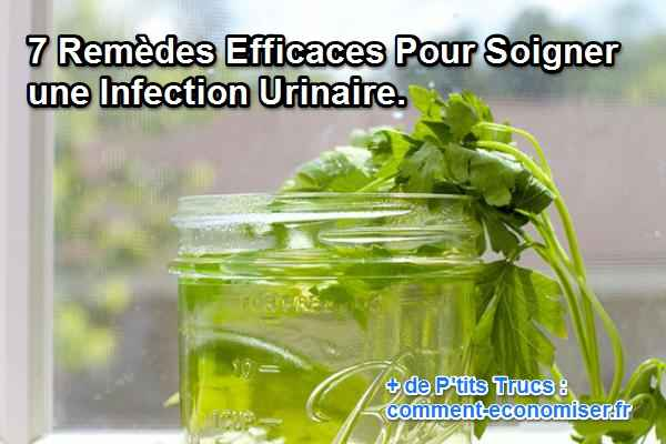the vert infection urinaire
