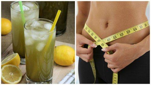 the vert maigrir kilos