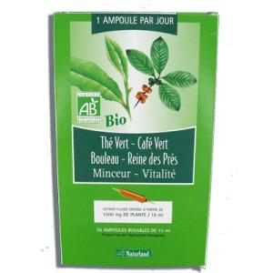 the vert ou cafe