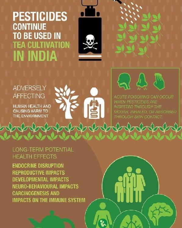 the vert sans pesticide