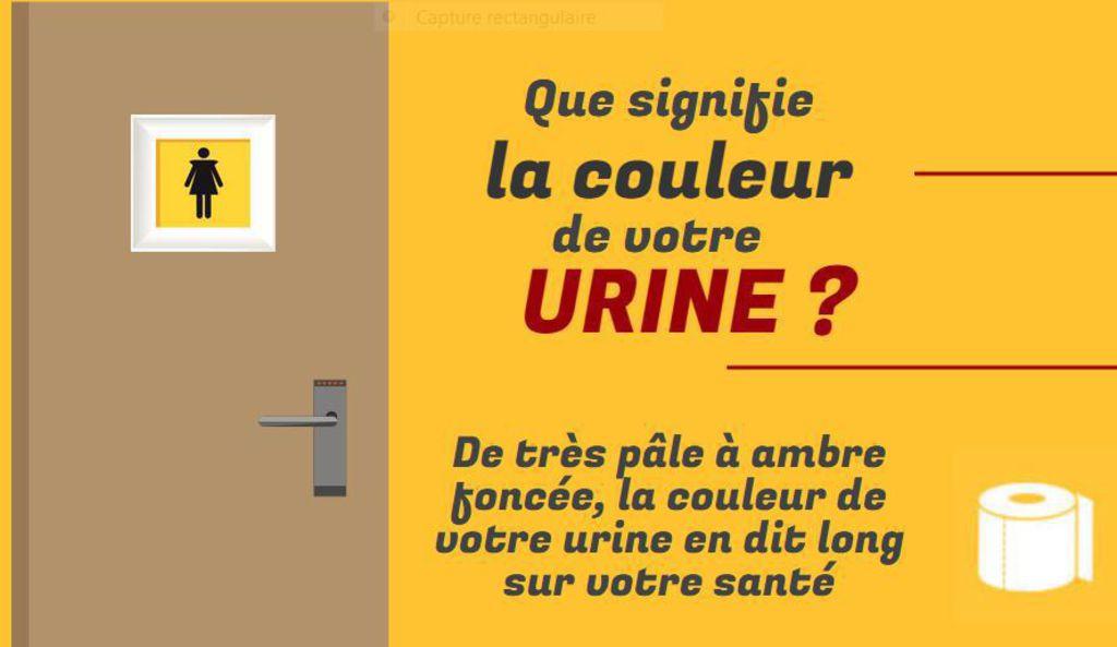 the vert urine