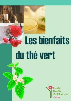 the vert vertu