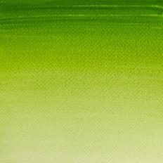 the vert vessie