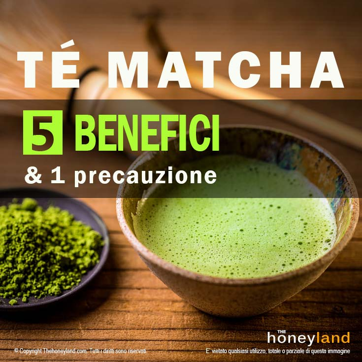 the matcha quanto berne