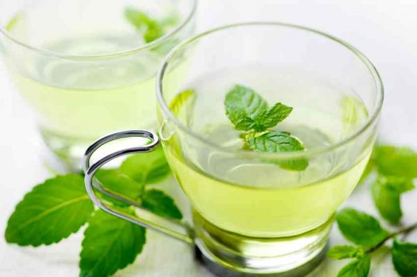 the menthe benefices