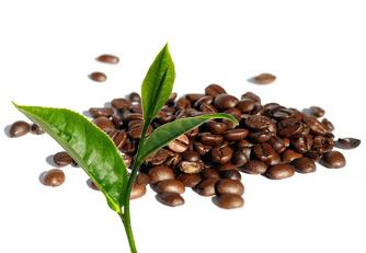 the noir cafeine
